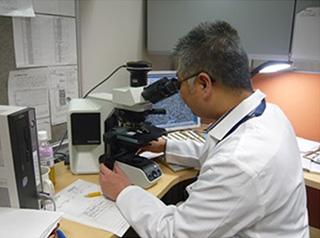病理組織診断⑤鏡検